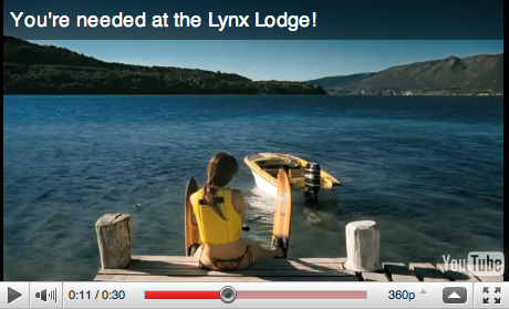 The Lynx Lodge