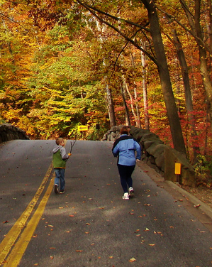 "Fall Running (via <a href=""http://www.flickr.com/photos/dionhinchcliffe/2995860812/"">dionhinchcliffe</a>)"