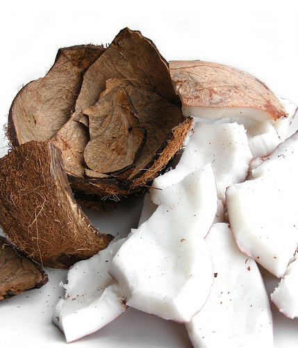 "coconuts! (via <a href=""http://www.flickr.com/photos/fotoosvanrobin/3629622347/"">FotosVanRobin's Photostream</a>.)"