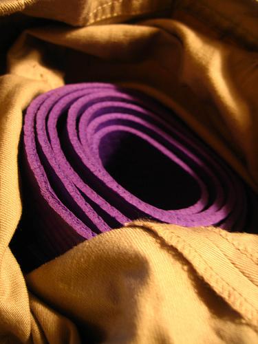 "Purple Mat (Via <a href=""http://www.flickr.com/photos/kitpfish/1817124430/"">KitAy</a>.)"